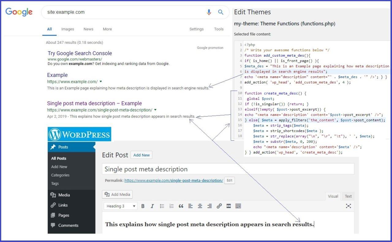 Meta description, wordpress, head, search resuslts